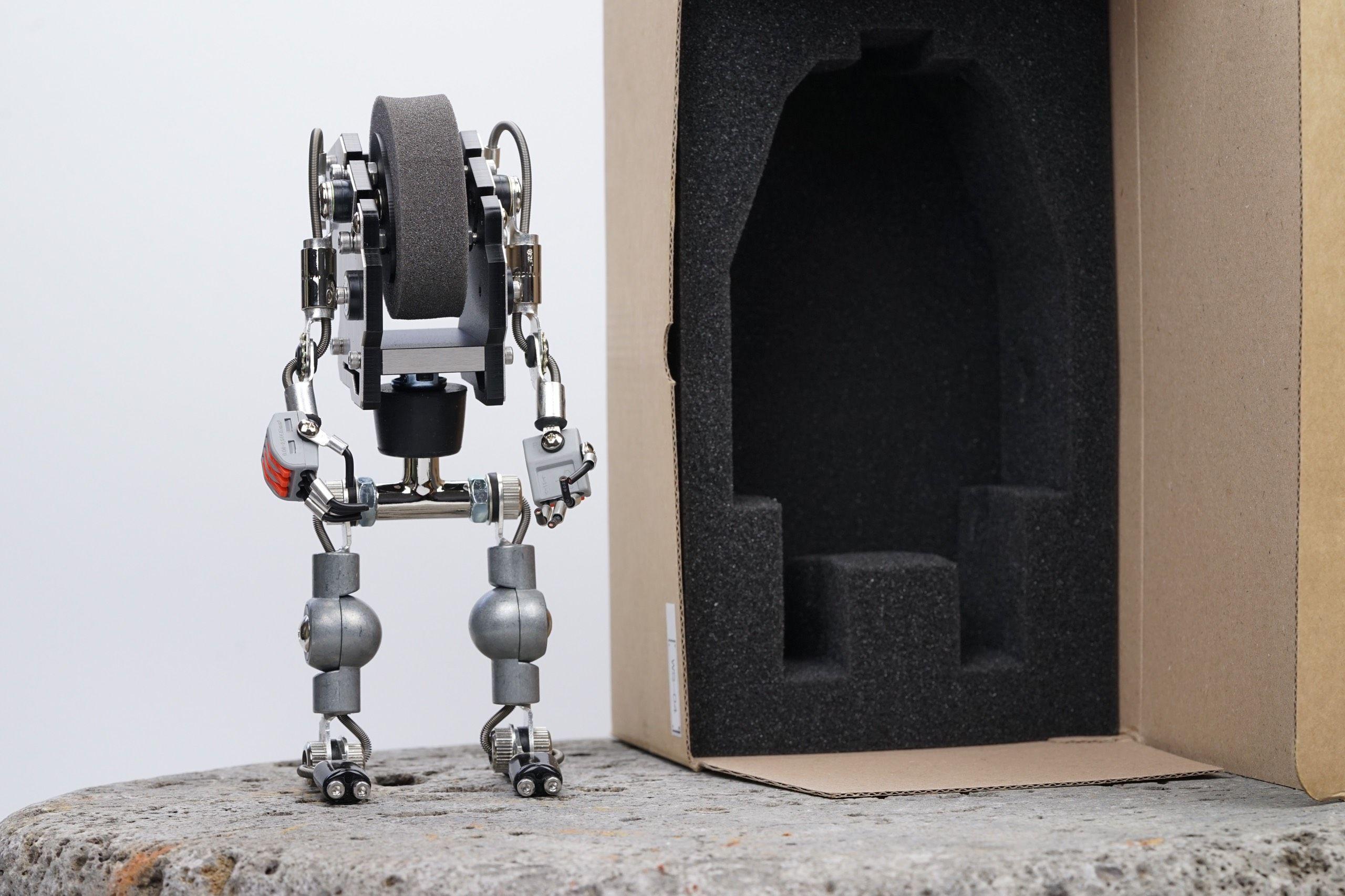 Big Robotoy